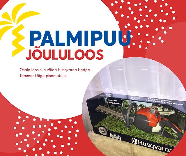 Palmipuu_loosimäng.png