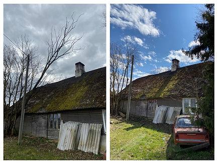 Ohtlik puu katusel.jpg