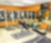 Chiropractors in Chapin, Chapin Chiropractor, Family Practice Chapin, Chapin Chiropractic, Natural Health, Doctors in Chapin, SC, Doctors in Chapin, Exercise in Chapin, Rehab in Chapin, Exercise Rehab