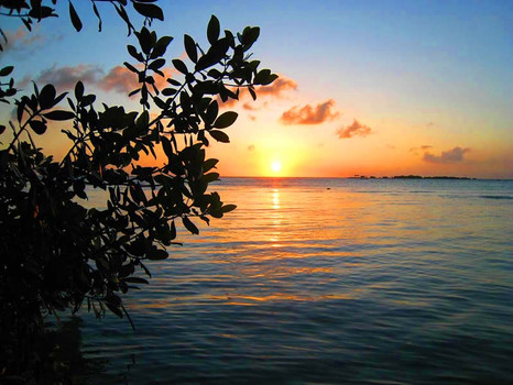 Gorgeous Sunset.
