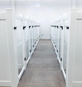 Boarding Area - Clean & Comfortable Suites