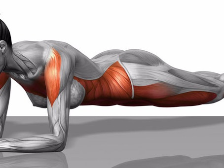 Why Plank? Core Strength and Abs