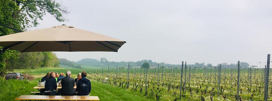 wijngaard.jpg