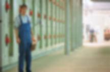 1991 GUTEX: Установка шестиэтажной сушилки