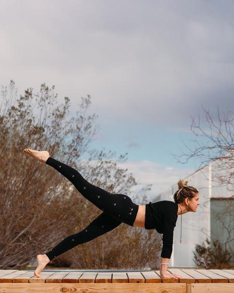 Ashley - Planks