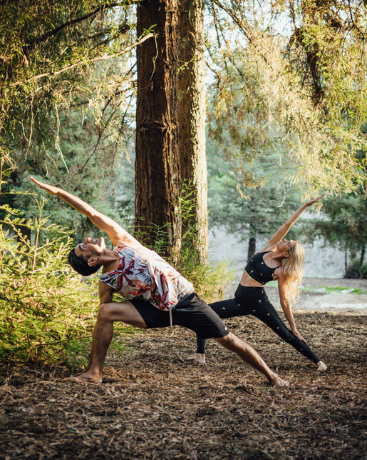 Yoga under redwoods