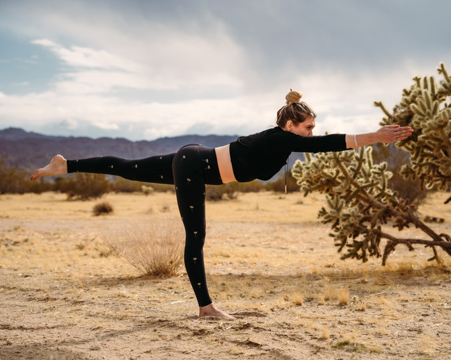Ashley - Desert Warrior