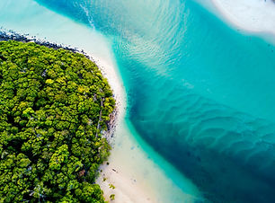 A vibrant aerial view of the beach.jpg