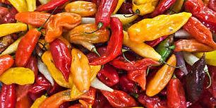chili pepper.jpg