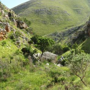 Cycling/Hiking Trail