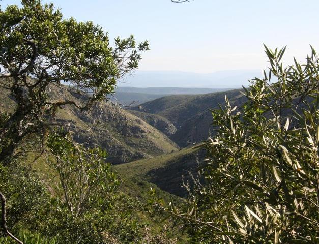 Kantiensrivier Trail