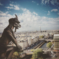 This is probably one of my favorite photo spots in Paris! #NotreDame has gargoyles and Chimeras