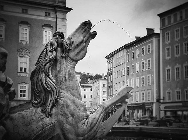 Salzburg, Austria #travel #travelblog #traveler #adventure #adventurer #wanderlust #wander #wanderya