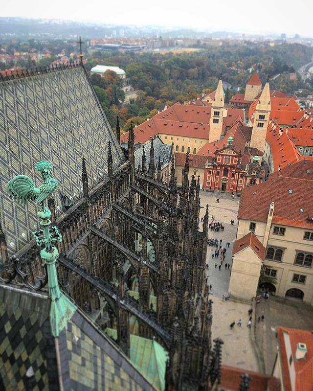 Not a bad morning view! #prague #czechrepublic #czechphoto #beautifuldestinations #viewfromabove_#in