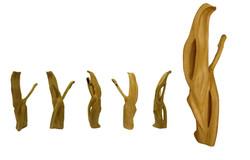 Escultura ASHE13