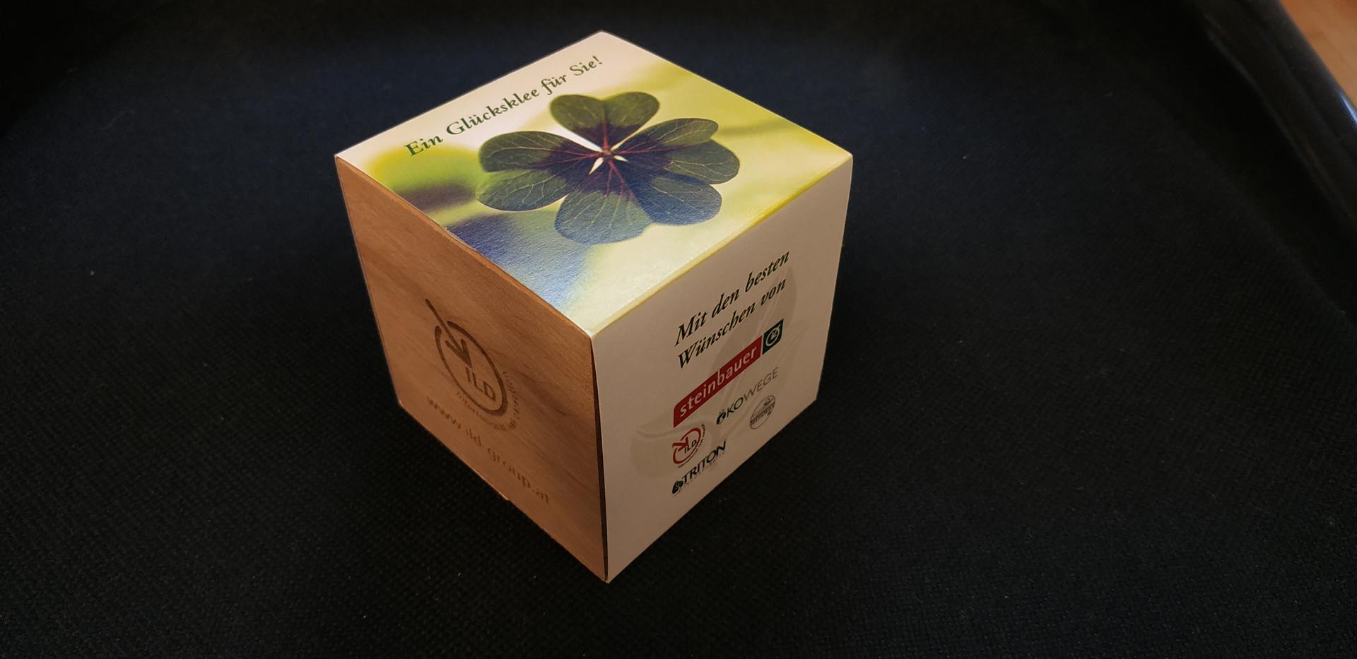 Glücksklee-Würfel mit Banderole