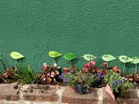 Proyecto: Los Jardineritos