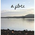 A-flote_Cover_L.Artigas.png