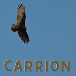 Carrion Poster_Updated_1.3.2021.png