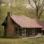 house woods 2.jpeg