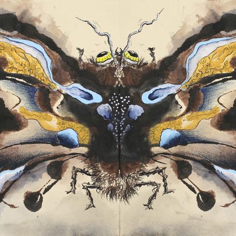 Moses Moth