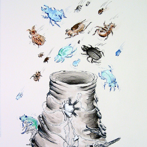 Plinian Hiccup: Carnivorous Beetles