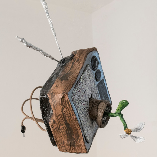 Potted TV