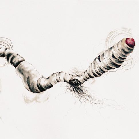 Squirmy Wormy