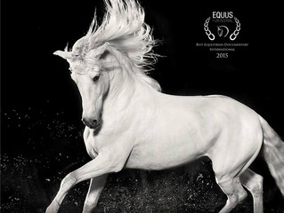 Documentary Horse of Kings, Thief of Hearts