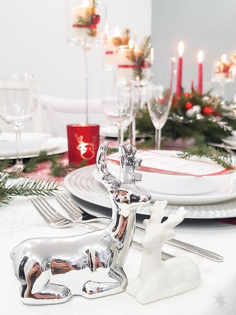 Christmas Time (14).jpg