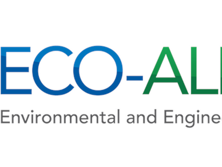 Partner Highlight: Melanie Okoro, Ph.D. (Eco-Alpha)
