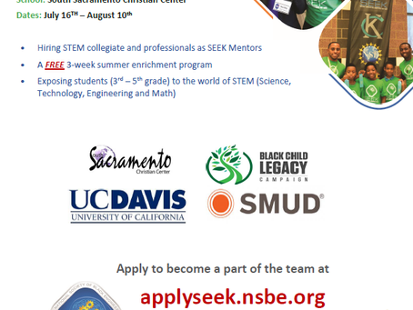 STEM Mentors Wanted This Summer!