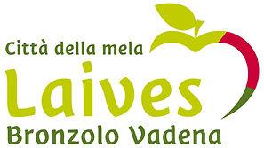 Logo_TV_Leifers_Laives_rgb_it_300dpi.jpg