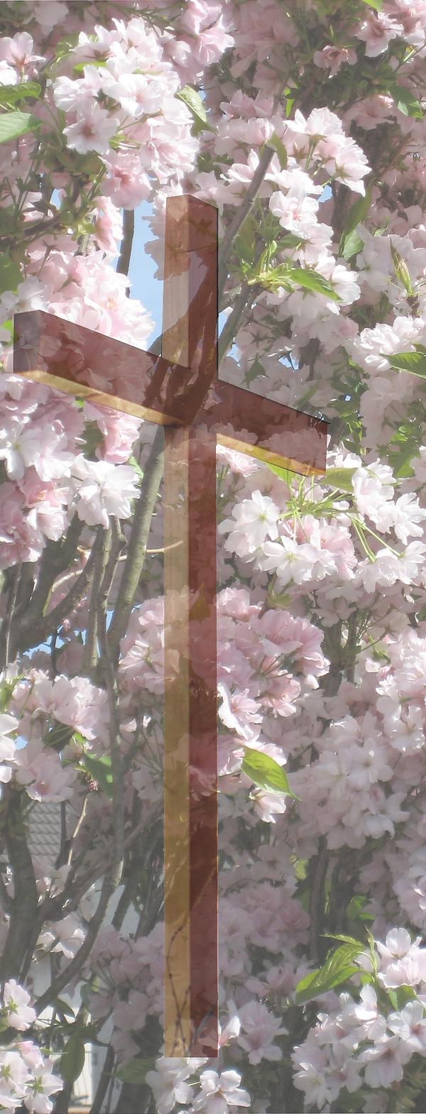 Fleurs 1.tif