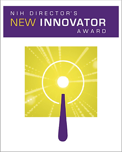 New Innovator.png