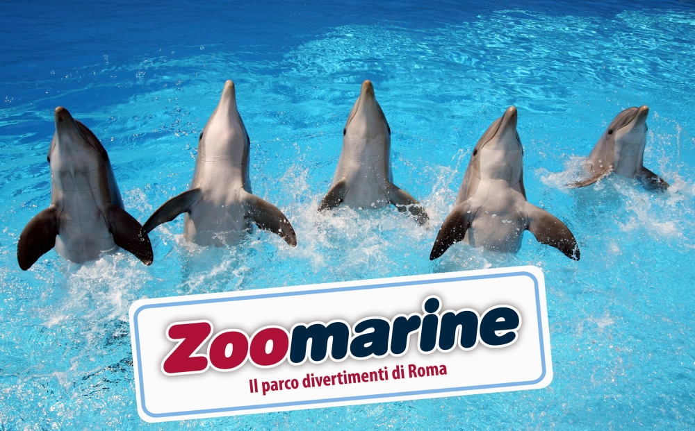 zoomarine2