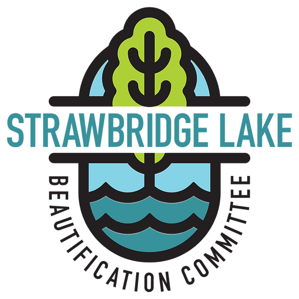 logo_lrg_trans_color.png