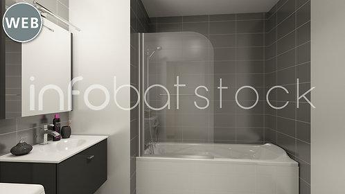 87542768-IIS_2_003-salle_bains