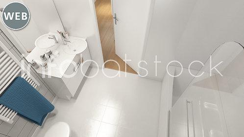 de0365de-IIS_4_0002-salle_bains