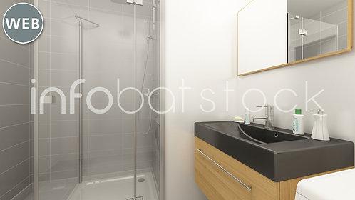 57ff55f9-IIS_3_0001-salle_bains