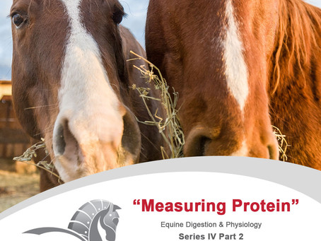 Measuring Protein