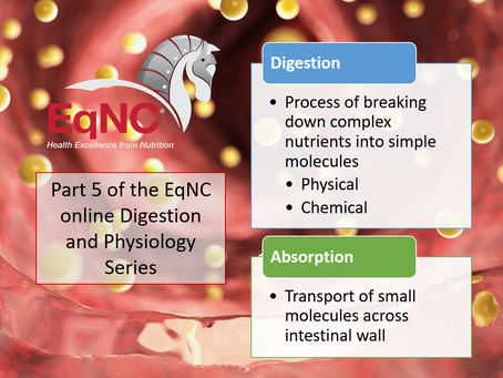 EqNC's online Equine Digestion & Absorption