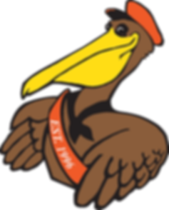 Logo Pelican Only Amplex.png