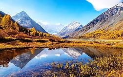 Altai natural reserve filming