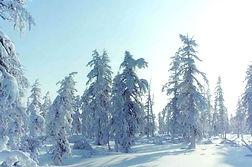 Frozen nature in Yakutia Sakha Republic