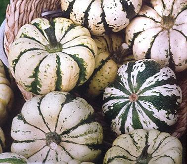 Декоративни тиквички Бяло/зелено