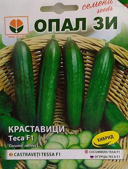 Краставици Теса - 2 гр.