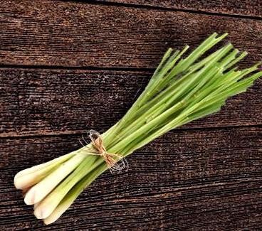 Лимонена трева 0,1 гр.
