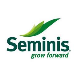 Семинис