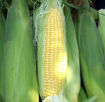 Сладка царевица Кармело - 500 гр.
